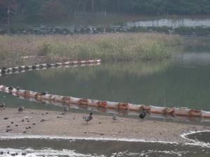 율동공원 풍경
